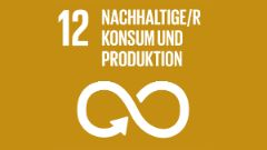 Sustainable-Development-Goals_icons-12_1200x675px_deut